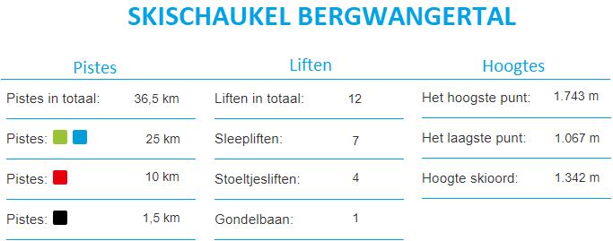 Informatie Skigebied Bergwang